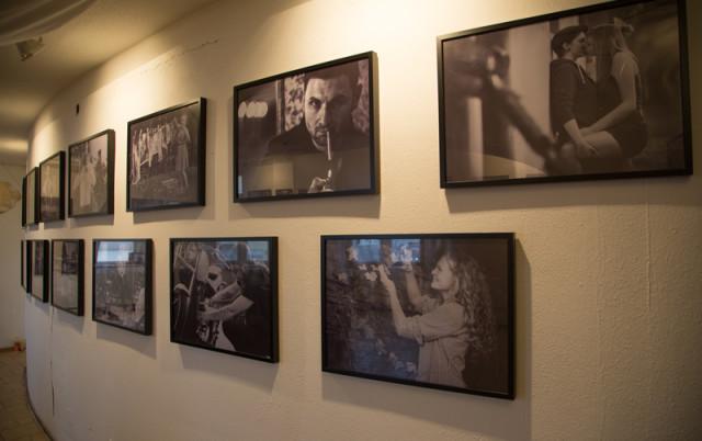 Ausstellungen-image