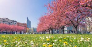 Leipzig Frühling