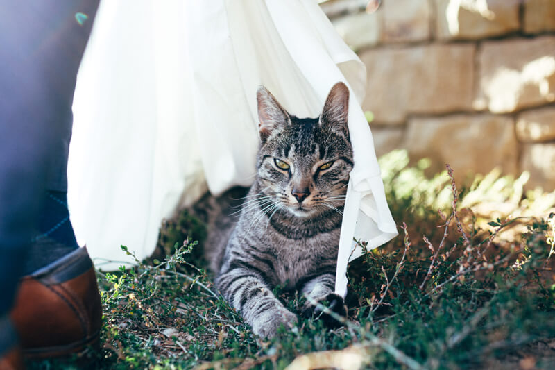 Hochzeit Anne & Marcus 16